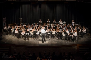 Band concert4